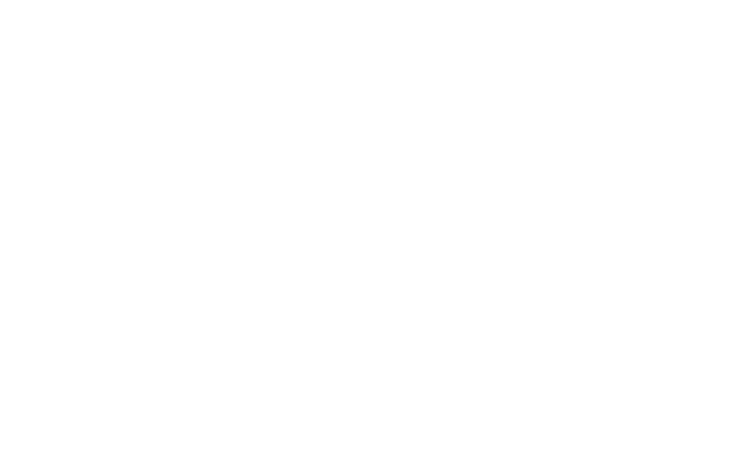 LIVELY HOTELS